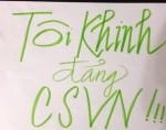 khinh đảng CSVN 1